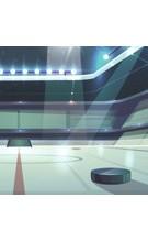 Hokejové reprezentace